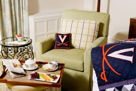 UVA Pillow and Trow